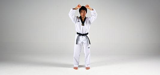 Hwangso-makgi (황소막기)