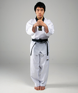 Bojumeok-junbi (보주먹준비)